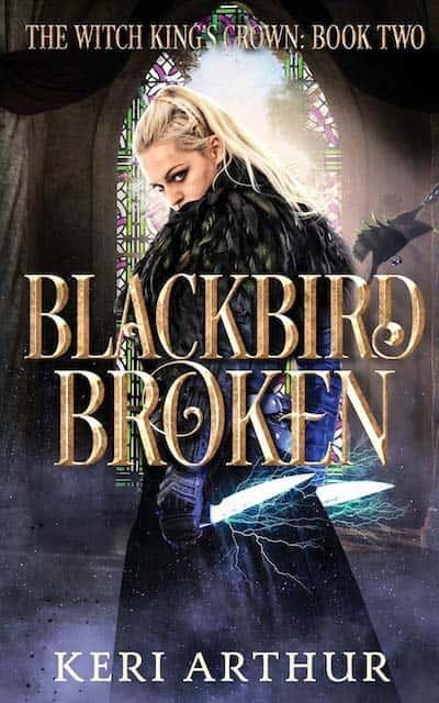 Book cover for Blackbird Broken by Keri Arthur