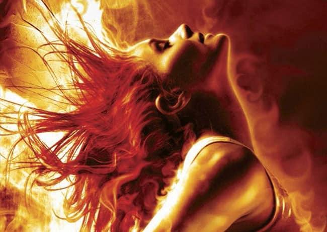 Souls of Fire series by Keri Arthur