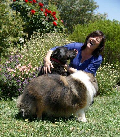 Keri and Pups
